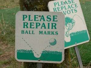 Please reapair ball marks of Pitch marks.